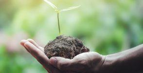 Специалност растителна защита